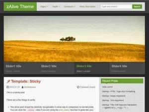 zalive_wordpress_theme