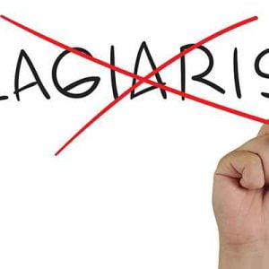 How to protect your blog posts from Plagiarism?