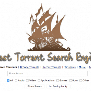 The Best Torrent Search Engine Sites List